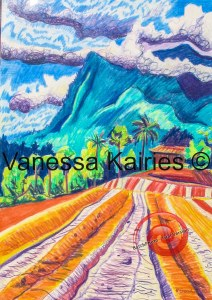 cairns tablelands - artists own - not for sale