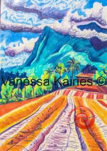cairns tablelands - artists own - not for sale